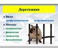 100% уничтожение грызунов любых видов ( крысы, мыши, полевки и т.п.) Средства безопасны для здоровья - Клининговые услуги в Крыму