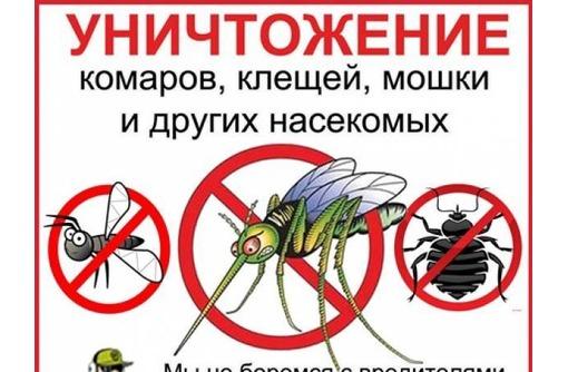 Уничтожение насекомых в Коктебеле! Дезинсекция, Дезинфекция и Дератизация! Пакет документов! Жмите!, фото — «Реклама Коктебеля»
