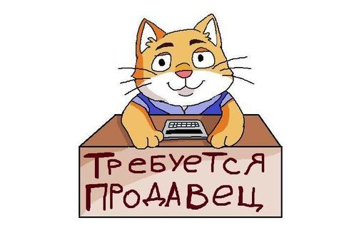Требуются продавцы в продуктовые магазины на постоянную работу, фото — «Реклама Севастополя»