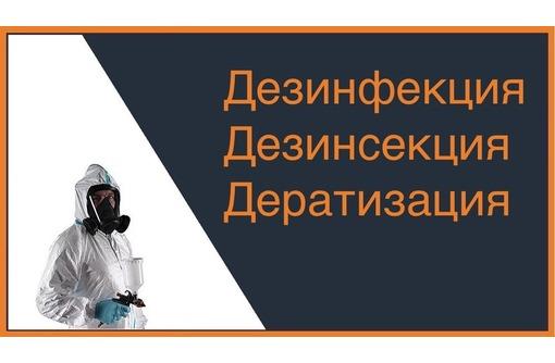 Профилактическая обработка от вирусов! Уничтожение плесени! Дезинсекция, дезинфекция, Дератизация!, фото — «Реклама Партенита»