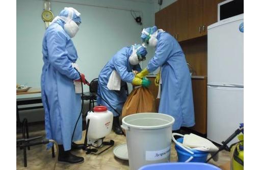 Обработка от плесени! Профилактическая  обработка от туберкулеза, и других вирусов!, фото — «Реклама Судака»