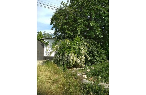 Продам отдельно стоящий дом,ул.Бородинская,район Будищева., фото — «Реклама Севастополя»