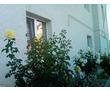 """Гостевой дом """"Дикая роза"""", 2-х, 3-х, 4-х местные номера, фото — «Реклама Севастополя»"""