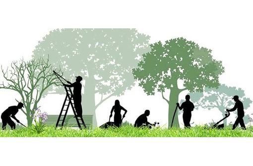 Услуги садовника. Садовые работы., фото — «Реклама Севастополя»