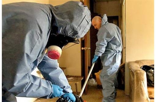 Уничтожение трупного запаха и вредных микроорганизмов в Севастополе! Эффект 100%! Звоните!, фото — «Реклама Севастополя»