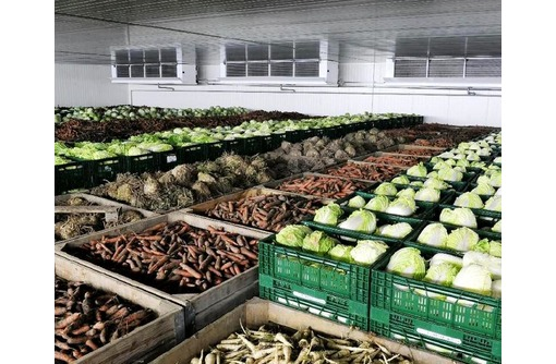 Холодильная установка для овощей., фото — «Реклама Белогорска»
