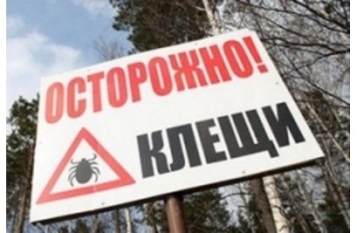 Акарицидная обработка (уничтожение клещей), с одновременным уничтожением всех насекомых! Гарантия!, фото — «Реклама Керчи»