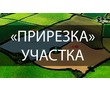 «ПРИРЕЗАТЬ» земельный  УЧАСТОК К своему без  АУКЦИОНА, фото — «Реклама Севастополя»