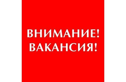 Консультант на входящий поток запросов (работа на дому), фото — «Реклама Красногвардейского»
