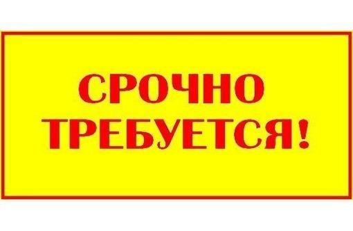 Работа  на дому для амбициозных мам в декрете, фото — «Реклама Приморского»