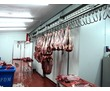 Холодильные Камеры для Заморозки Мяса., фото — «Реклама Севастополя»