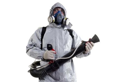 Трупный запах? Не приятно и очень вредно! Не стоит выкидывать всю мебель и делать ремонт! Звоните!, фото — «Реклама Белогорска»