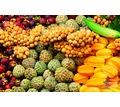 Thumb_big_thai_fruits