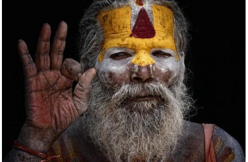 Уничтожим блох клопов! Без шаманов и заговоров навсегда!, фото — «Реклама Севастополя»