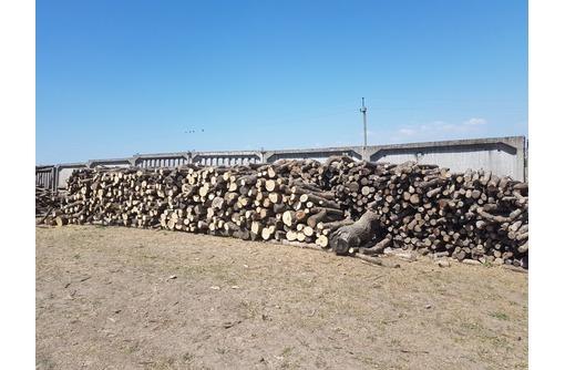 дрова разных пород дерева, фото — «Реклама Белогорска»
