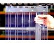 ПВХ завесы, Термошторы, ПВХ шторы, Силиконовые Завесы НЕДОРОГО!!!, фото — «Реклама Старого Крыма»