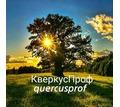 Мебель, двери, лестницы, кухни из дерева и в Севастополе – «Столярное Ателье Севастополь» - Мебель на заказ в Севастополе