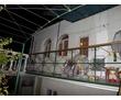 Сдается отдельный этаж в частном секторе.рн.Стрелка, фото — «Реклама Севастополя»