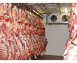 Холодильные,морозильные камеры для заморозки и хранения продуктов., фото — «Реклама Симферополя»