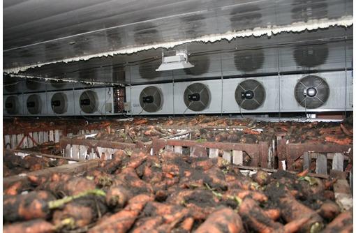 """Монтаж Овощехранилищ. Холодильное Оборудование """"BITZER"""", фото — «Реклама Белогорска»"""