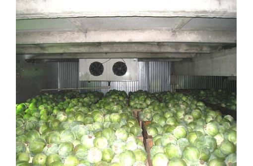 Монтаж овощехранилищ. Холодильное оборудование., фото — «Реклама Белогорска»