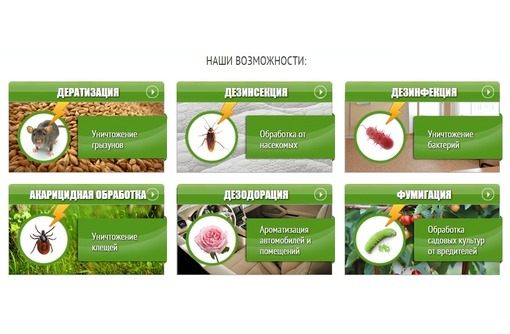 Санобработка  в Севастополе – «ДезКрым»: быстро и с гарантией, фото — «Реклама Севастополя»