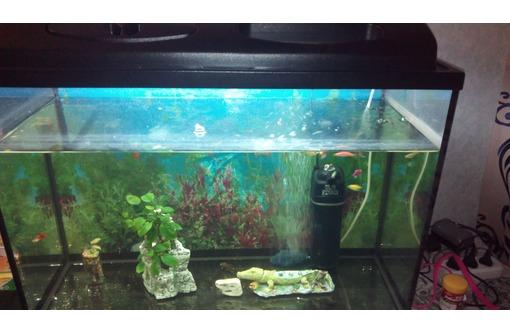 Продам аквариум 150 литров 840×540×340 полный комплект прилагается..., фото — «Реклама Севастополя»