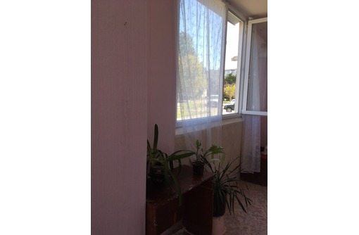 Продам большую 1-комнатную в Камышовой, фото — «Реклама Севастополя»