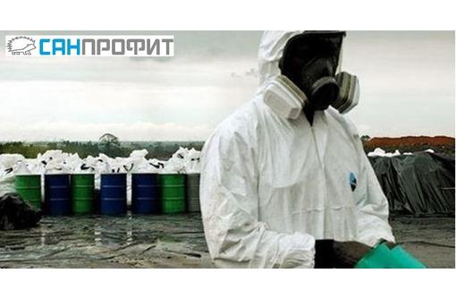 Уничтожение блох, клопов, тараканов по СанПин в Керчи и Феодосии, фото — «Реклама Керчи»