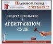 Представление  интересов в арбитражном  суде, фото — «Реклама Севастополя»