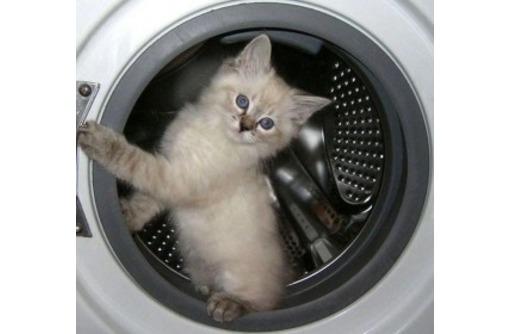 Ремонт стиральных машин в Керчи, фото — «Реклама Керчи»