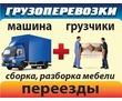 ГРУЗЧИКИ ГРУЗОПЕРЕВОЗКИ квартирные офисные доставка ГОРОД МЕЖГОРОД, фото — «Реклама Севастополя»