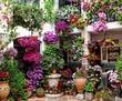 Курсы Флорист-дизайнер (56 ак.ч.) идет набор в  группу, фото — «Реклама Севастополя»