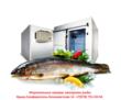 Холодильные Камеры Холодильные Склады Камеры Заморозки., фото — «Реклама Севастополя»