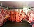"Холодильные Камеры ""Polair"" для Мяса.Заморозка Хранение., фото — «Реклама Бахчисарая»"