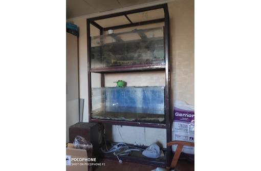 Продам стеллаж с двумя аквариумами, фото — «Реклама Севастополя»