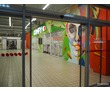 Роспись стен, граффити на заказ. Севастополь. Крым., фото — «Реклама Севастополя»