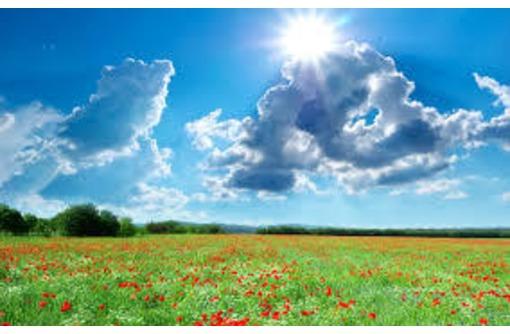Продам земельный участок недорого, фото — «Реклама Симферополя»