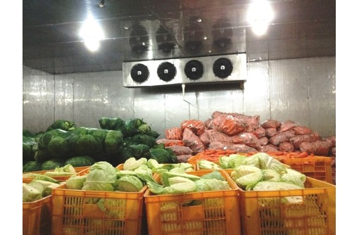 """Овощехранилища.Холодильное оборудование под """"ключ"""", фото — «Реклама Красногвардейского»"""