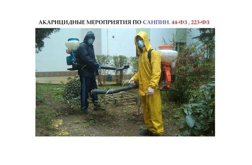 Акарицидные противоклещевые мероприятия для организаций и предприятий, фото — «Реклама Севастополя»