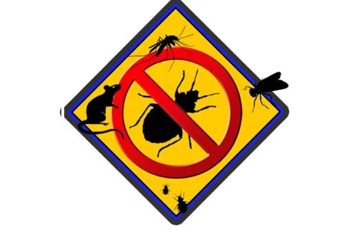 Уничтожение насекомых, борьба с грызунами, выведение плесени, озонация и дезодорация в Крыму, фото — «Реклама Севастополя»