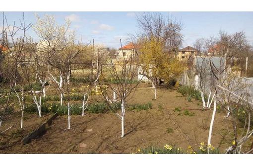 Земельный участок в черте города., фото — «Реклама Севастополя»