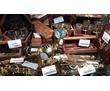 Морские сувениры в Севастополе – «Кают компания»: качественные и оригинальные подарки, фото — «Реклама Севастополя»