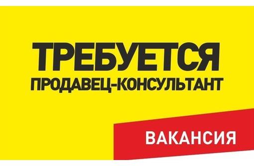 Продавец-менеджер отопительных приборов, фото — «Реклама Севастополя»