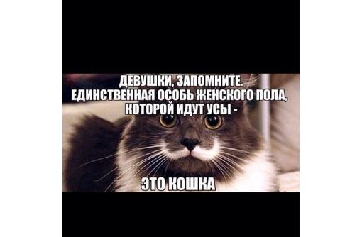 депиляция воском. шугаринг, фото — «Реклама Севастополя»