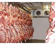 Холодильные установки заморозки мяса -5.-25С, фото — «Реклама Красногвардейского»