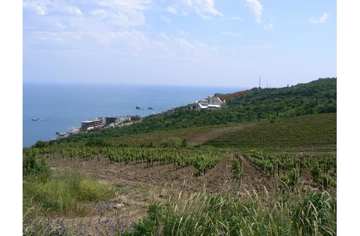 180 соток земли у моря г.Алушта, фото — «Реклама Алушты»