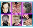 Работа для парикмахера. Требуется парикмахер в Севастополе.Вакансия парикмахер-универсал Севастополь, фото — «Реклама Севастополя»