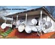 Антенны спутниковые и эфирные, фото — «Реклама Евпатории»