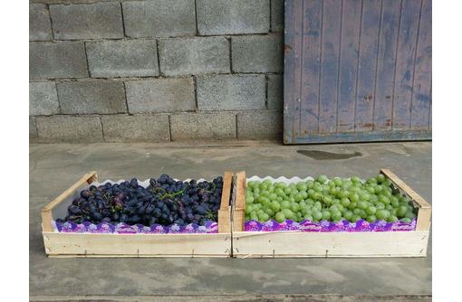 Ящики,лотки,упаковка  фруктов и овощей от производителя, фото — «Реклама Красногвардейского»